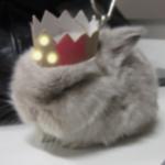 Foto del profilo di SkyEventide